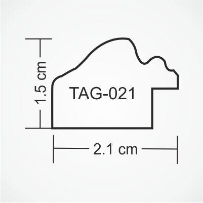 tag-021-profile