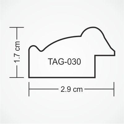 tag-030-profile